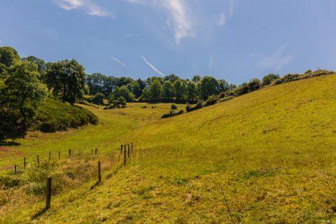 De Lee-trail in Luxemburg, een zware trektocht in de Ardennen…