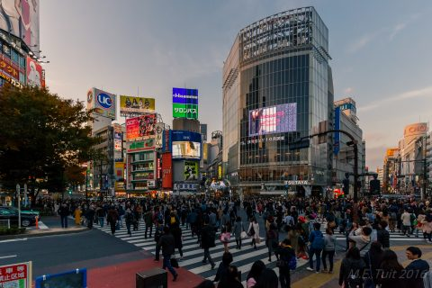 Shibuya crossing, stoplicht is groen!